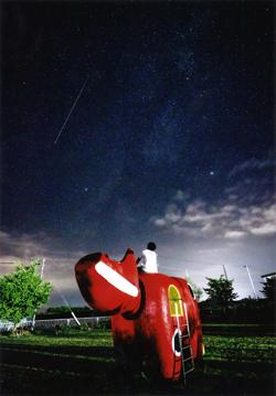 赤べこと僕とペルセウス座流星群