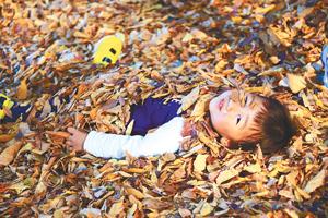 落ち葉のフトン