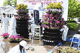 花で観光客お出迎え 耶麻農高生がペチュニア栽培