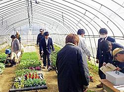 野菜苗など大好評 耶麻農高が販売、防災無線でPR